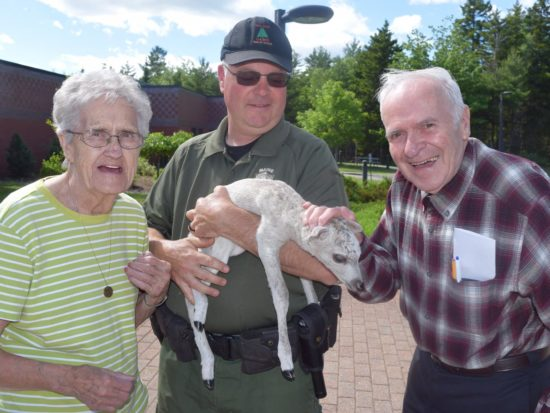 Maine Veterans' Homes - Machias residents visit with a goat