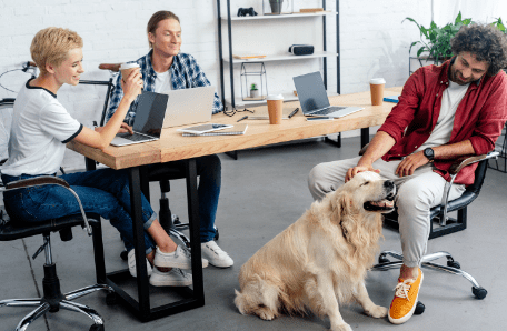 Group of employees visiting and petting a dog at the office