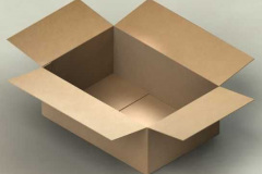 Cardboard box with four open flaps