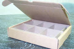 Cardboard box with open top and small compartments
